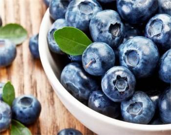 6 lợi ích tuyệt vời của việc ăn trái cây tươi hàng ngày
